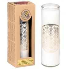 """JÄLLE SAADAVAL! LEMMIK!  Looduslik küünal klaasis """"Elulill"""", kuld ja valge, lõhnastatud eeterlike õlidega 21x6.5 cm"""